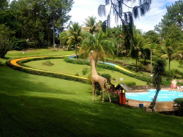 Chapéu de Sol_piscina toboágua_girafa